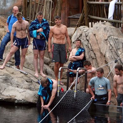 Land's Luke Fitzgerald, Jamie Heaslip, Donncha O'Callaghan and Tommy Bowe were amongst the players who took to the water at the Durban marine park