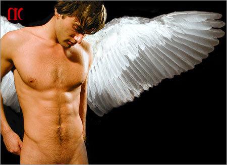 080405_angel1