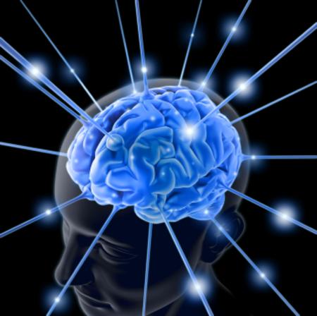 Brain763982